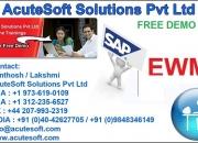 SAP EWM Training   SAP EWM Online Course
