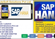 sap hana course,sap hana online training