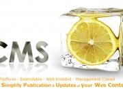 wordpress website development chennai