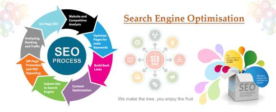 Best seo company in jaipur for services