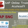 SAP SNC,SAP SNC Course,sap SNC online training
