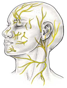 Neurosurgery treatments available surgery in india, neurosurgery procedures india
