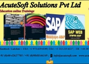 Best SAP WEBDYNPRO abap Online Training Course ...