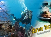 Domestic & International Tour Operators India