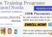 web designing industrial training noida