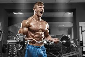 Where to buy pro muscle lab supplement