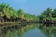 Great place to be with your family here in kerala