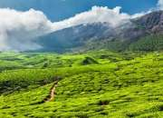Kerala - munnar and alleppey package for 4 days just rs 10999/-