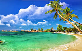 Andaman 5 days package just rs 11999/-